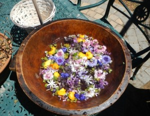 Flowers add Fun at Fynbos for Foodies Good Hope Gardens