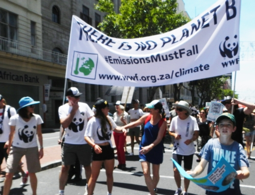 People's Climate March 2015! Now what?