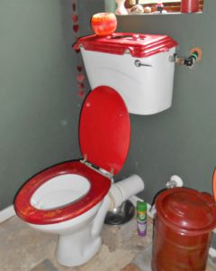 water-wise-toilet-uses-grey-water
